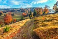 Rumänien – Wirtschaftsstandort mit Potenzial