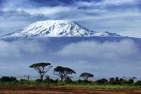 Kenia und Tansania: Lions on the move