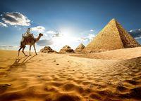 Chancen am Nil